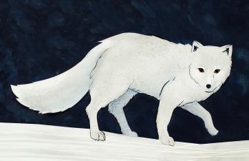 Elizabeth Goss, Arctic Circle, Winter Coat